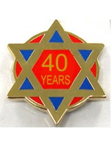 Lapel Pin - Ra 40 Year