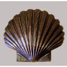 St Thomas Of Acon Shell -  Small - Bronze