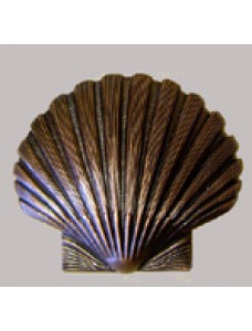St Thomas Of Acon Shell -  Small - Bronze