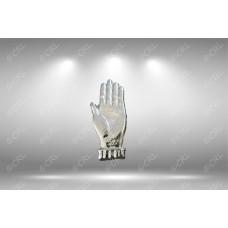 Ulster Hand Emblem