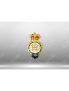 RAOB Crown Lapel Pin