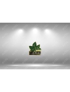 RAOB Ivy Leaf Lapel Pin